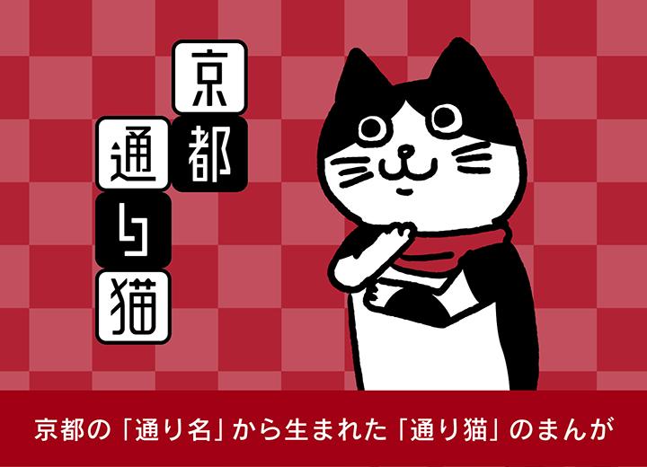 京都 通り猫